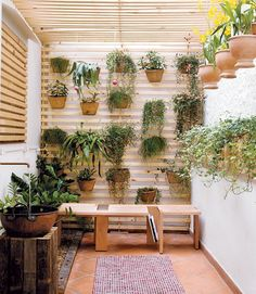 jardim-de-inverno-plantas-paisagismo-casa (Foto: Evelyn Müller/Editora Globo)