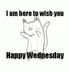 Find GIFs with the latest and newest hashtags! Search, discover and share your favorite Hump Day GIFs. The best GIFs are on GIPHY. Funny Wednesday Quotes, Hump Day Quotes, Wednesday Hump Day, Hump Day Humor, Wednesday Humor, Happy Saturday, Happy Quotes, Funny Quotes, Wednesday Greetings