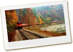I want to take a train ride through the Smoky Mountains in the fall.