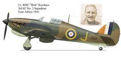 Hawker Hurricane MKIIb trop flown by Robert Harold Carlisle Kershaw when he won his DSO. Graphics by Brent Best. Air Force Aircraft, Ww2 Aircraft, Fighter Aircraft, Fighter Jets, Military Aircraft, Hawker Hurricane, War Thunder, Ww2 Planes, Aviation Art