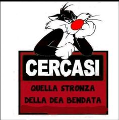 A.A.A. CERCASI......! - Assunta Saporito - Google+