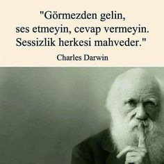 Meaningful Sentences, Good Sentences, Meaningful Words, Book Quotes, Life Quotes, Sad Movies, Lost In Translation, Charles Darwin, Sweet Quotes