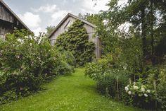 Alexa Ehlers / Garden Collage