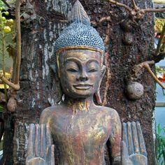 Cambodia   by Sue Powell