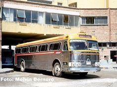 Escuderias F1, School Bus Conversion, Busses, Train Car, Transportation, Mexico, Planes, Trains, Animated Cartoons