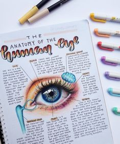 This is a repost by one of our inspiring customer ! Very eye catch… - SCHOOL NOTES Bullet Journal Notes, Bullet Journal School, Bullet Journal Ideas Pages, Nursing School Notes, College Notes, Pretty Notes, Good Notes, School Organization Notes, Eye Study