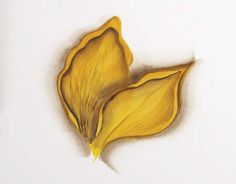 Basic Techniques of One-Stroke Flower Petal Painting   Features   Painters Online