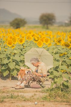 Japanese photographer Yasuto took a series of heartwarming and wholesome photos of his grandmother and her dog, a Shiba Inu. And in the background—the jaw-droppingly gorgeous landscape that the Land of the Rising Sun is known for. Shiba Inu, Japanese Dogs, Best Friends For Life, Album Photo, Akita, Beautiful Day, Cute Dogs, Cute Pictures, Dog Cat