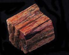 Petrified Wood - Root and Sacral Chakra. Transformation, grounding, past life regression. 2nd Chakra, Sacral Chakra, Chakra Healing, Chakras, Crystal Healing, Chakra Symbols, Past Life Regression, Beautiful Rocks, Petrified Wood