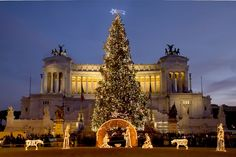 ¡Luces de #Navidad por todo el mundo!