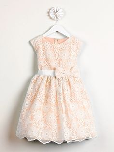 Coral Spring Embroidered Organza Dress. Also comes in all ivory