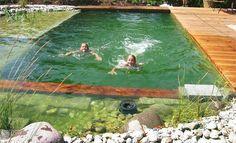 Ein Schwimmteich im eigenen Garten bietet Badespaß pur: In sauberem und weichem Wasser schwimmt man wie im Badesee – so planen Sie Ihren Schwimmteich