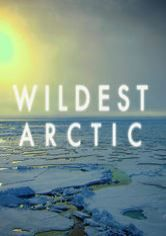 Wildest Arctic - We are watching this now and learning so much. Really beautiful.