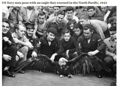US Navy men pose with an eagle they rescued in the North-Pacific (1944)