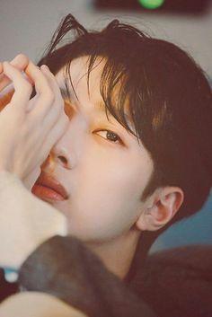 Wanna-One - Lai Guanlin Guan Lin, Lai Guanlin, Ong Seongwoo, Girls Series, Kim Jaehwan, Produce 101, Ji Sung, Fandom, 3 In One