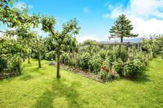 Ffordd Gyffylog, Eglwysbach, Colwyn Bay - 4 bedroom farm house house - Swetenhams