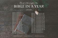 READ THE BIBLE IN A YEAR PLAN – WEEK 1 | Grace & Salt