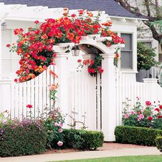 In older or historic neighborhoods where homes sit near the street, arbor-and-fence pairings like this one can make the most of a small front yard. Climbing roses add a vivid burst of color to the crisp white woodwork of the gated arbor and fence. Arbor Gate, Garden Arbor, Diy Garden, Fence Gate, Garden Fencing, Fence Panels, Cedar Fence, Garden Entrance, Rail Fence