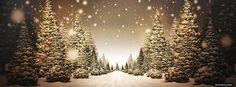 Beautiful Christmas Road facebook cover Christmas Facebook Banner, Facebook Christmas Cover Photos, Winter Facebook Covers, Free Facebook Cover Photos, Beautiful Facebook Cover Photos, Facebook Timeline, Covers Facebook, Find Facebook, Facebook Photos