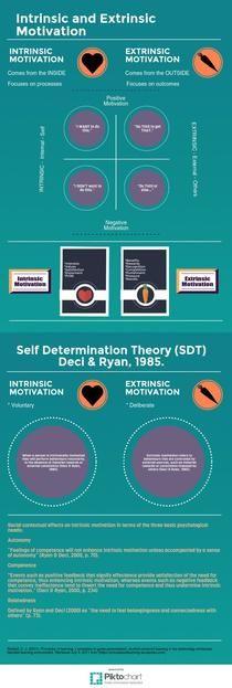 Intrinsic - Extrinsic Motivation | Piktochart Infographic Editor