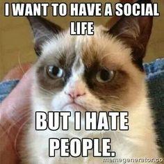Grumpy Cat meme #GrumpyCat @Sam Taylor Todd @Naomi Francois Borrero  totally me and Taylor