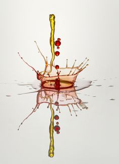 INCREDIBLE water drop photography by Heinz Maier