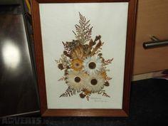 Framed Dried Flowers framed behind glass