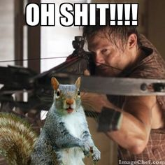 Run, squirrel, ruuuuun! On second thought... ur dead meat. Just give up now.
