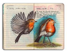 Lovely little birds created in a Moleskine journal by Kathrin Jebsen-Marwedel - Wendy Schultz ~ Art Journals. Sketchbook Inspiration, Art Journal Inspiration, Art Sketchbook, Sketch Journal, Art Journal Pages, Art Journals, Journal Notebook, Moleskine, Diy Art