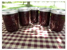 MADE: Wild Blackberry Honey Jam. Turned out pretty runny (still good though) - I think ours boiled for too long.