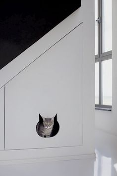 """This """"cat compartment"""" is just plain cute, but we imagine the space would work well for all kinds of pets (you could even hide the litter box in there)."""