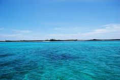The emerald sea of the Sea of Abaco as you enter Little Harbour #GenaGilbertRealEstate