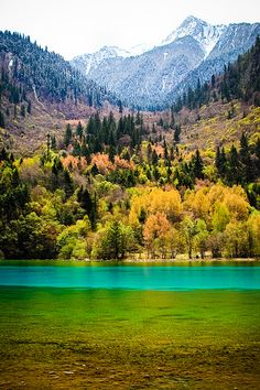 UNESCO World Heritage Site - Jiuzhaigou Valley, Tibet, China
