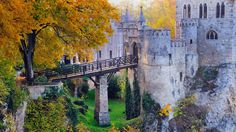 Bing fotos: Lichtenstein Castle near Hanau in Baden-Württemberg, Germany The Places Youll Go, Great Places, Places To See, Amazing Places, Lichtenstein Castle, Germany Castles, Castle Ruins, Historical Architecture, Beautiful Places To Visit