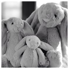 6. Soft {nothing softer than Bernard Bunny and his little sisters - everyone needs a bunny in their life} #fmsphotoaday #bunny #rabbit #soft #cuddly #baby #gift #oursonlyphotoadayfeb    Instagram photo by @babeswithbabies via ink361.com