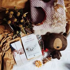 """D I A N A 🚀 Dreams Have Wings pe Instagram: """"[En] A few things that spark me joy: a headband from Italy, @rutasepetysauthor books and a gifted teddy bear. ✨ What are the things that…"""""""