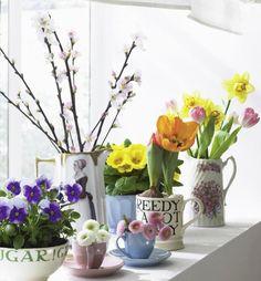 Endlich kann man wieder aus dem Vollen schöpfen und mit Frühlingsblumen in frischen Farben dekorieren.