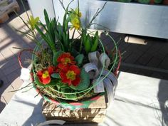 Jarní kytice (12 pieces)
