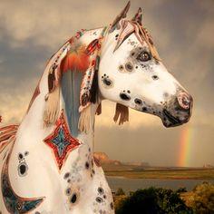 2015/08/02 Painted Pony