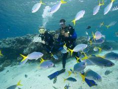 16 Top Diving Destinations