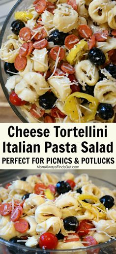 Three Cheese Tortellini Italian Pasta Salad Recipe (Perfect for Picnics and Potl. - Recipes to Try - Tortellini Pasta Salad With Tortellini, Pasta Salad Italian, Cheese Tortellini Recipes, Cheese Recipes, Potluck Recipes, Cooking Recipes, Healthy Recipes, Healthy Pizza, Potluck Food