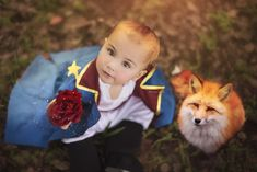 Little Prince Party, The Little Prince, Cake Smash, First Birthdays, Fox, Baby Boy, Baby Shower, Cool Stuff, Halloween