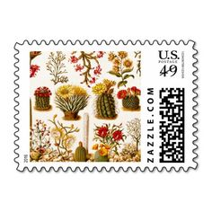 Vintage 1911 Cactus Flower Old Floral Illustration Postage
