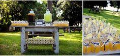Organic lemonade buffet for a summer wedding.