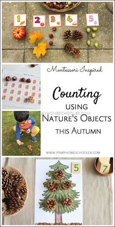 Counting activities for fall