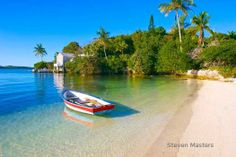 Bermuda photographer and painter, Steven Masters