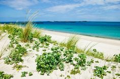 Herm's beautiful Shell Beach so named because it is made up of shells carried by the Gulf Stream. Channel Islands Uk, Guernsey Channel Islands, Guernsey Island, Best Cruise, Cruise Port, Bailiwick Of Guernsey, Island Holidays, Shell Beach, Tour Tickets