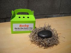 Pet rock - Rocky - the pet that doesnt poop - gag gift. $5.00, via Etsy.