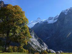 Schwarzwaldalp - Gross Scheidegg fall hike Alps, Mount Everest, Hiking, Mountains, Nature, Travel, Walks, Naturaleza, Viajes