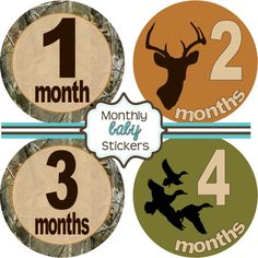 Monthly Baby Stickers  Baby Shower Gift and by theprintedparty, $9.00